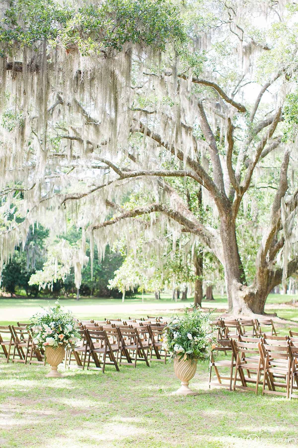 Willow Tree Wedding Backdrop